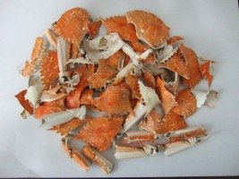 shrimp-shell-high-quality-scrap-shells-for.jpg